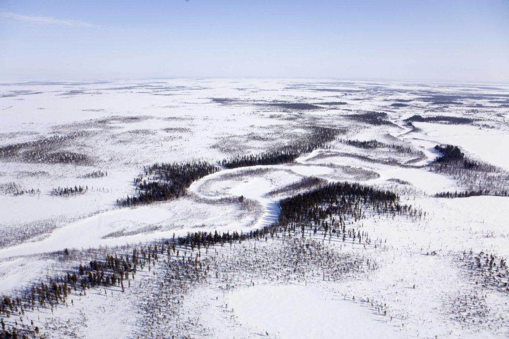 Siberian taiga landscape near the Moldanov reindeer camp, Siberia.